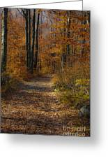 Fall Path Greeting Card by Mark Dunlap