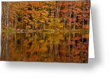 Fall Reflection Greeting Card by Karol  Livote