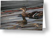 Fall Reflections And Duck Greeting Card by Valia Bradshaw