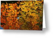 Fall Textures In Water Greeting Card by LeeAnn McLaneGoetz McLaneGoetzStudioLLCcom