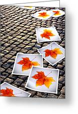 Fallen Autumn  Prints Greeting Card by Carlos Caetano