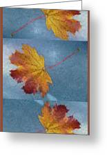 Falling Autumn Leaves Greeting Card by Margie Avellino
