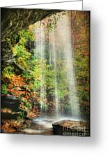 Falling Softly Greeting Card by Darren Fisher