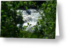 Falls In Forest Frame Greeting Card by Sue Wild Rose