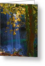 Falls In The Fall Greeting Card by Dale Stillman