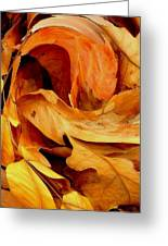 Fantastic Fall Greeting Card by Becky Foster