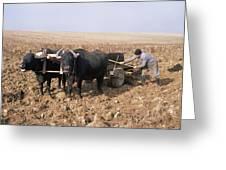 Farmer Fertilising A Field Greeting Card by Bjorn Svensson