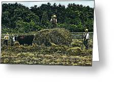 Farmers Haying Greeting Card by Robert Goudreau
