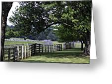 Farmland Shade Appomattox Virginia Greeting Card by Teresa Mucha