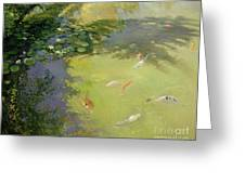 Featherplay Greeting Card by Timothy Easton