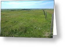 Fence On The Alberta Prairie Greeting Card by Jim Sauchyn