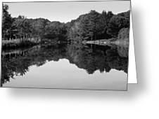 Fenns Pond Greeting Card by Karol  Livote