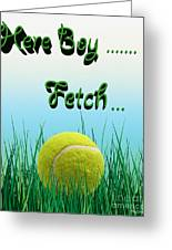 Fetch Greeting Card by Cheryl Young