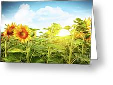 Field Of Colorful Sunflowers And Blue Sky  Greeting Card by Sandra Cunningham