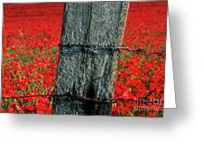 Field Of Poppies With A Wooden Post. Greeting Card by Bernard Jaubert