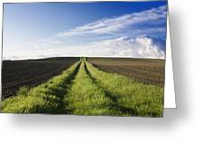 Field Path In Limagne. Auvergne. France. Europe Greeting Card by Bernard Jaubert