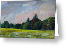 Fields Mid-storm Greeting Card by Bob Northway