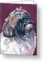 Finnigan Greeting Card by Marsha Elliott