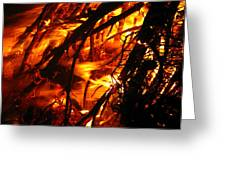 Fire And Ice Greeting Card by Brittany H