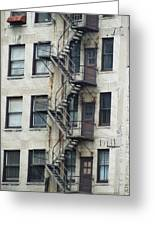 Fire Escape Greeting Card by Todd Sherlock