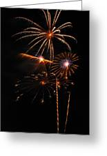 Fireworks 1580 Greeting Card by Michael Peychich