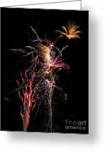 Fireworks Greeting Card by Cindy Singleton