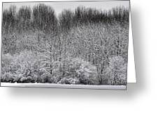 First Snow Greeting Card by Diane E Berry
