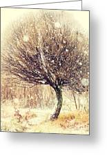 First Snow. Snow Flakes Greeting Card by Jenny Rainbow