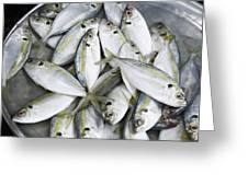 Fish For Sale In A Market Greeting Card by Skip Nall