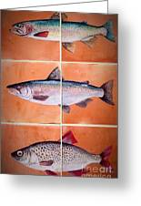Fish Mural On Terracotta Tiles Greeting Card by Andrew Drozdowicz