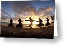 Five Hula Dancers At The Beach At Palauea Greeting Card by David Olsen