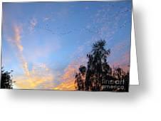 Flight Into The Sunset Greeting Card by Ausra Paulauskaite