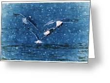 Flock  Greeting Card by Debra  Miller