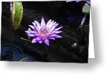 Floral Burst Of Purple Greeting Card by Jennifer Lyon