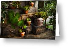 Flower - Plant - A Summers Soak  Greeting Card by Mike Savad