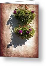 Flower Baskets Greeting Card by Svetlana Sewell