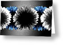 Flower Board3 Greeting Card by Mark  Ross