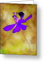 Flower Take Flight Greeting Card by Judi Bagwell