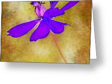 Flower Take Flight Greeting Card by Judi Bagwell