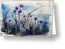 Flowering Chives Greeting Card by Stephanie Aarons
