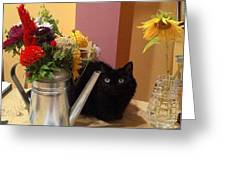 Flowers And Cat Greeting Card by Sandahl Parrish