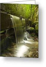 Flowing Water Greeting Card by Andrew Soundarajan