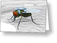 Fly With Microchip Greeting Card by Christian Darkin