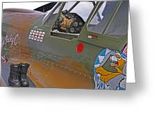 Flying Tigers 02 Greeting Card by Jeff Stallard