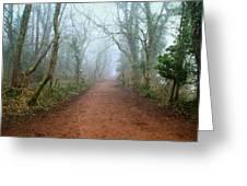 Foggy Woodland Trail Greeting Card by Julie L Hoddinott