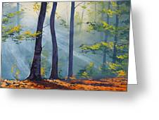 Forest Sunrays Greeting Card by Graham Gercken