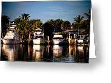 Fort Pierce Marina Greeting Card by Trish Tritz