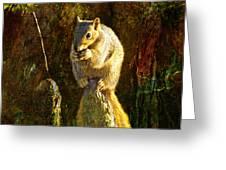 Fox Squirrel Sitting On Cypress Knee Greeting Card by J Larry Walker