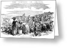France: Grape Harvest, 1854 Greeting Card by Granger