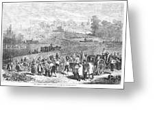 France: Wine Harvest, 1871 Greeting Card by Granger